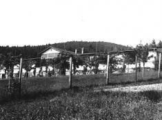 OLU Paseka 1923